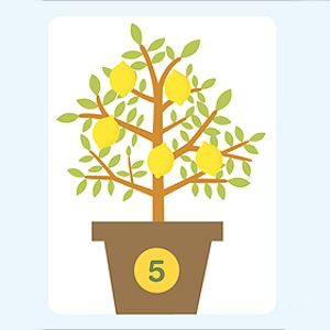 Counting Lemons File Folder Game