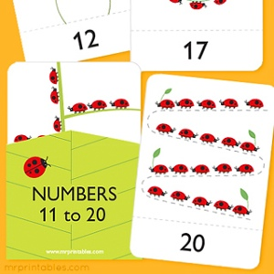photograph regarding Free Printable Number Cards 1-20 referred to as No cost Printable Flash Playing cards - Mr Printables