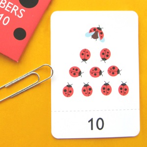 Number Flash Cards 1 - 10