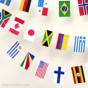 picture about Printable Flags called Printable American Flag - Mr Printables