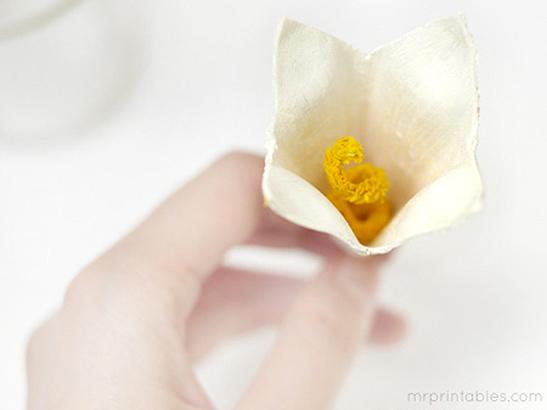 mrprintables-egg-carton-lilly-tutorial-4
