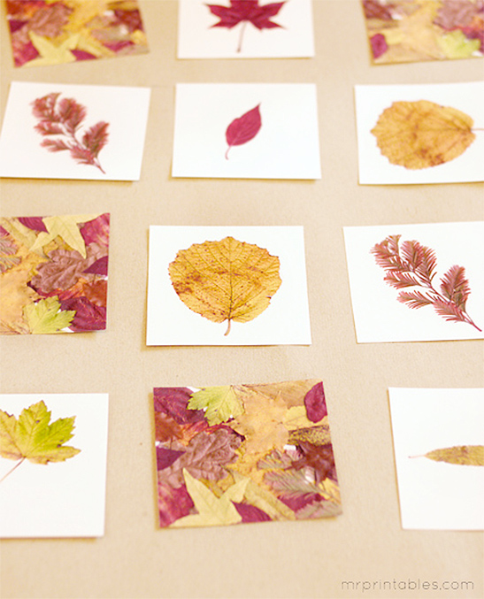 image about Make Your Own Matching Game Printable known as Autumn Leaves Memory Video game - Mr Printables